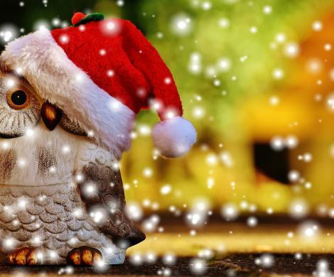 Dolce Natale al Rifugio SoresIl luogo perfetto per vacanze spensierate nella natura