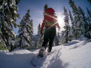 Ciaspole: escursioni guidate e benessere naturale 21-27 dicembreLanciati nell
