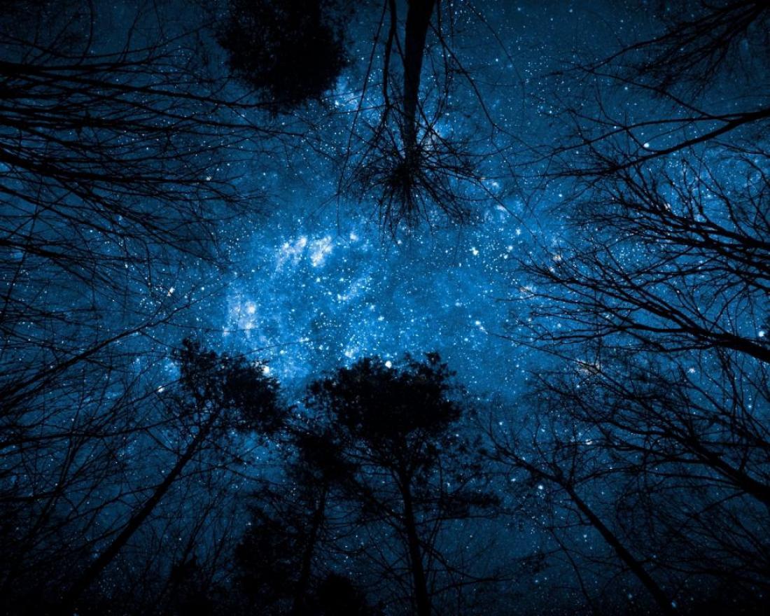 alberi-montagna-notte
