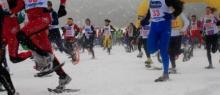 Promozione Ciaspole e neve in Predaia