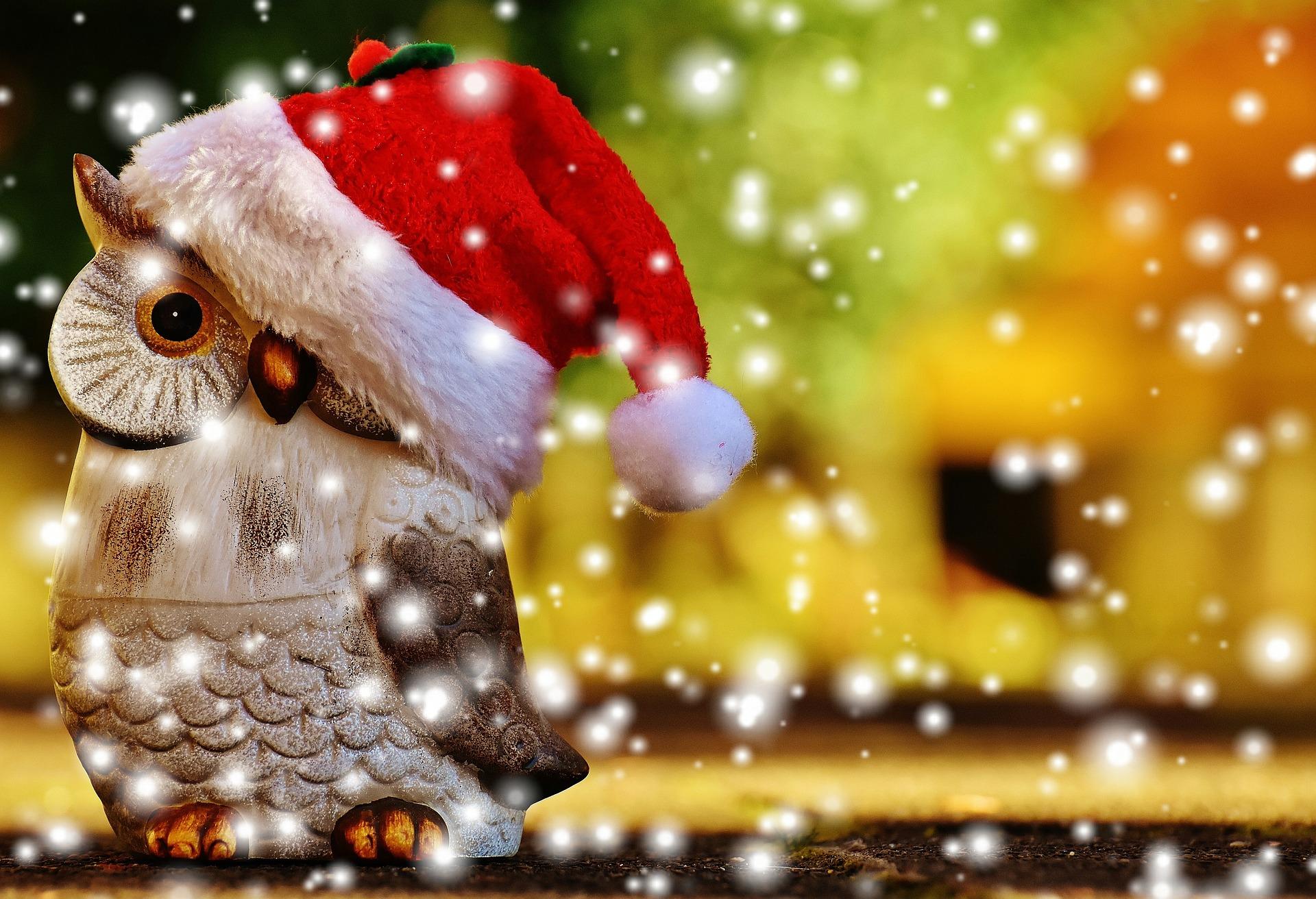 Promozione Dolce Natale al Rifugio Sores
