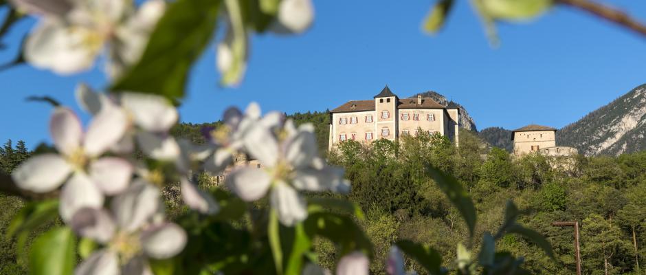 Leggi articolo Tutte le strade portano a Castel Thun! Guida agli itinerari 2021
